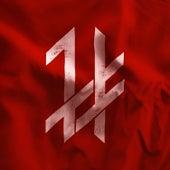 Dark Flag by Phinehas