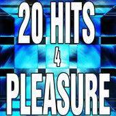 20 Hits 4 Pleasure de Various Artists