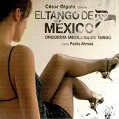 El Tango De Mexico by Various Artists