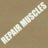 Repair Muscles de Various Artists