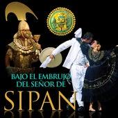 Bajo el Embrujo del Señor de Sipán von Various Artists