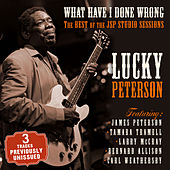 What Have I Done Wrong - The Best of the JSP Sessions by Lucky Peterson