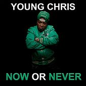 Now or Never de Young Chris