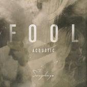 Fool (Acoustic) by The Sweeplings