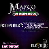 Prohibidas En Radio by Various Artists