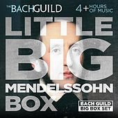 Little Big Box of Mendelssohn by Various Artists
