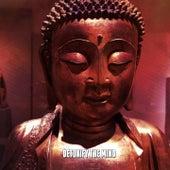 Detoxify The Mind von Entspannungsmusik