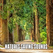 Natures Saving Sounds de Nature Sounds Artists