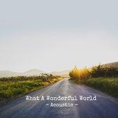 What A Wonderful World (Acoustic) de Paul Canning