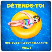 Détends-toi (Musique chillout relaxante), Vol. 1 by Various Artists