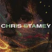 Fireworks by Chris Stamey
