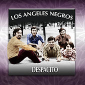 Despacito by Los Angeles Negros