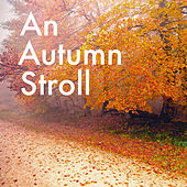 An Autumn Stroll de Various Artists