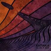 Der Sinn im Unsinn by Katinka