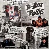 B-Boy Posse de Various Artists