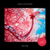 Get Low (Kuuro Remix) van Zedd & Liam Payne
