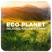 Eco Planet Relaxing Nature Sounds de Various Artists
