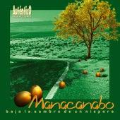 Bajo la sombra de un níspero (Remasterizado) de Manacanabo