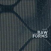 1 Year RAW FORMS - EP by Various Artists