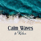 Calm Waves to Relax – Soothing Music to Rest & Relax, Relaxation Melodies, Beautiful Memories, Soft Sounds by Relaxing Spa Music