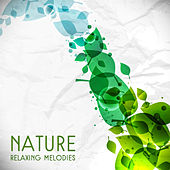 Nature Relaxing Melodies – Forest Relaxation, Easy Listening, Healing Nature Sounds, Music to Relief Stress de Sounds Of Nature