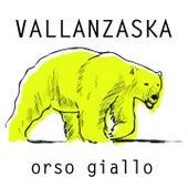 Orso giallo von Vallanzaska