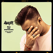 All or Nothing (Steve Smart Remix) de Amir