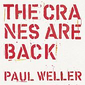 The Cranes Are Back (Edit) de Paul Weller