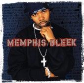 The Understanding by Memphis Bleek