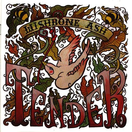 Tender by Wishbone Ash