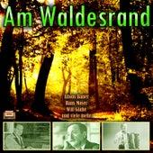 Am Waldesrand von Various Artists