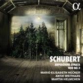 Schubert: Arpeggione Sonata & Trio No. 2 von Martin Helmchen