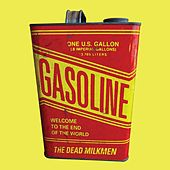 Welcome to the End of the World by The Dead Milkmen