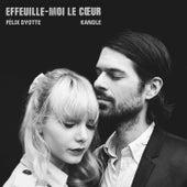 Effeuille-moi le cœur by Félix Dyotte
