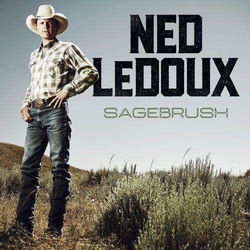 Sagebrush by Ned LeDoux