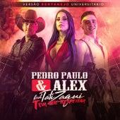 Tem Que Respeitar (Versão Sertanejo Universitário) by Pedro Paulo & Alex