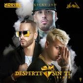 Desperte Sin Ti (Remix) de Nicky Jam Noriel