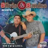 Acústico (Ao Vivo) de Silvio