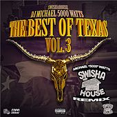 The Best of Texas, Vol. 3 (DJ Michael
