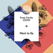 Ment To Be by Pump Gorilla