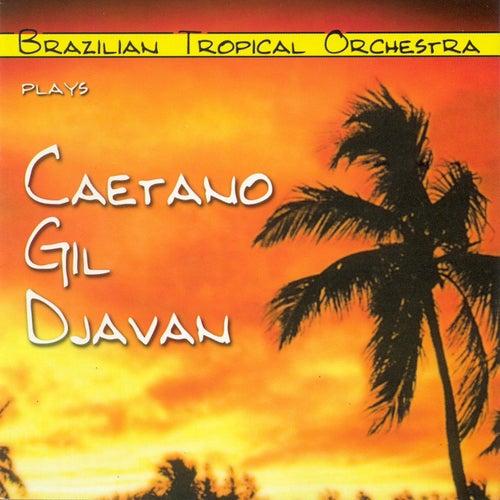 Plays Caetano, Gil e Djavan by Brazilian Tropical Orchestra