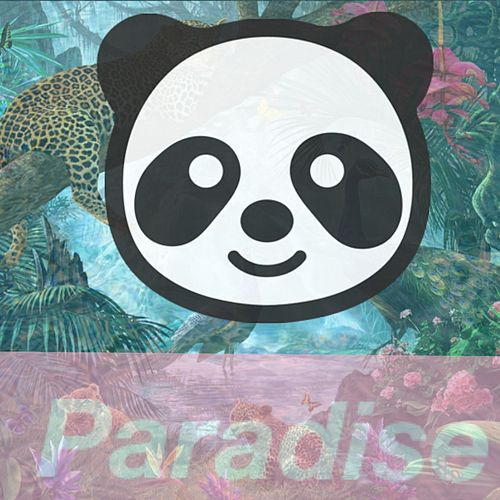 Paradise by Gecko