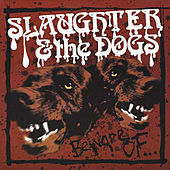 Beware of... von Slaughter and the Dogs