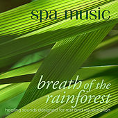 Spa Music: Breath of the Rainforest by Energi