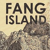 Day Of The Great Leap by Fang Island