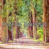 Studying Background by Classical Study Music (1)