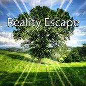 Reality Escape von Entspannungsmusik
