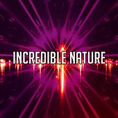 Incredible Nature by Lullabies for Deep Meditation