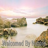 Welcomed By Nature von Entspannungsmusik