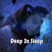 Deep In Sleep by Deep Sleep Music Academy